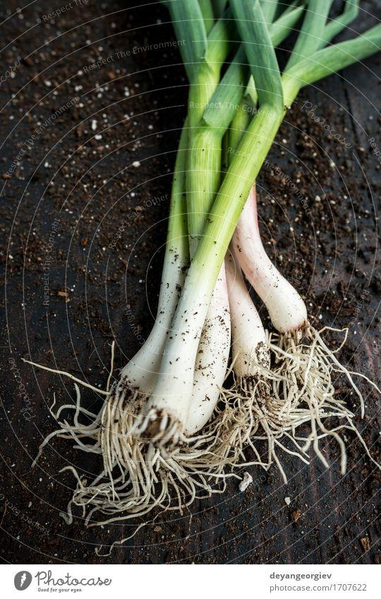 Frischer grüner Knoblauch Gemüse Kräuter & Gewürze Essen Vegetarische Ernährung Natur Blatt frisch Frühling organisch Porree roh Geruch Zutaten aromatisch Lauch