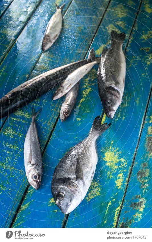 Fisch waschen. Dorade, Wolfsbarsch, Makrele und Sardinen Meeresfrüchte Mittagessen Pfanne frisch blau schwarz Brasse Waschen Wasser siehe Bass Zitrone roh