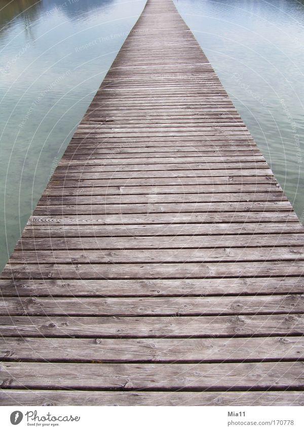 Ohne Ende Natur Wasser blau ruhig Einsamkeit Herbst Holz grau Wege & Pfade See Landschaft Linie Stimmung braun Brücke