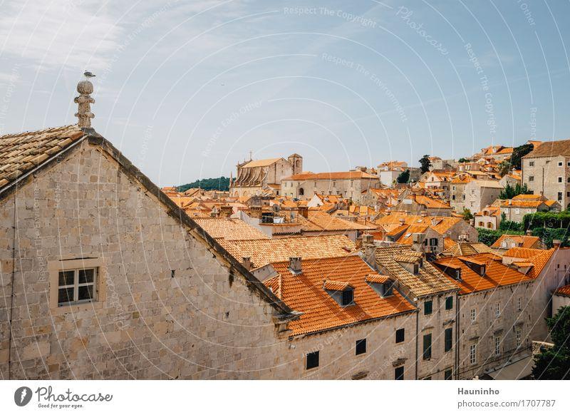Dubrovnik Vll Himmel Ferien & Urlaub & Reisen Stadt Pflanze Sommer rot Haus Tier Fenster Architektur Wand Gebäude Mauer Fassade Tourismus Kirche