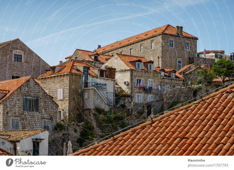 Dubrovnik lll Ferien & Urlaub & Reisen Stadt Pflanze Sommer Baum Blume Haus Fenster Architektur Wand Gebäude Mauer Fassade Tourismus Wohnung Treppe