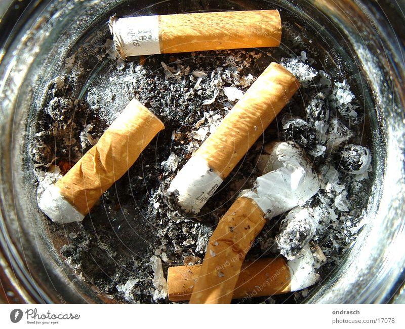 Kippen Dinge Rauchen Zigarette Bildausschnitt Anschnitt ungesund Zigarettenasche Aschenbecher Zigarettenstummel Filterzigarette Lungenerkrankung