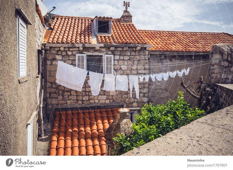 Dubrovnik ll Ferien & Urlaub & Reisen Tourismus Städtereise Sommer Pflanze Baum Kroatien Hafenstadt Altstadt bevölkert Haus Gebäude Architektur Mauer Wand