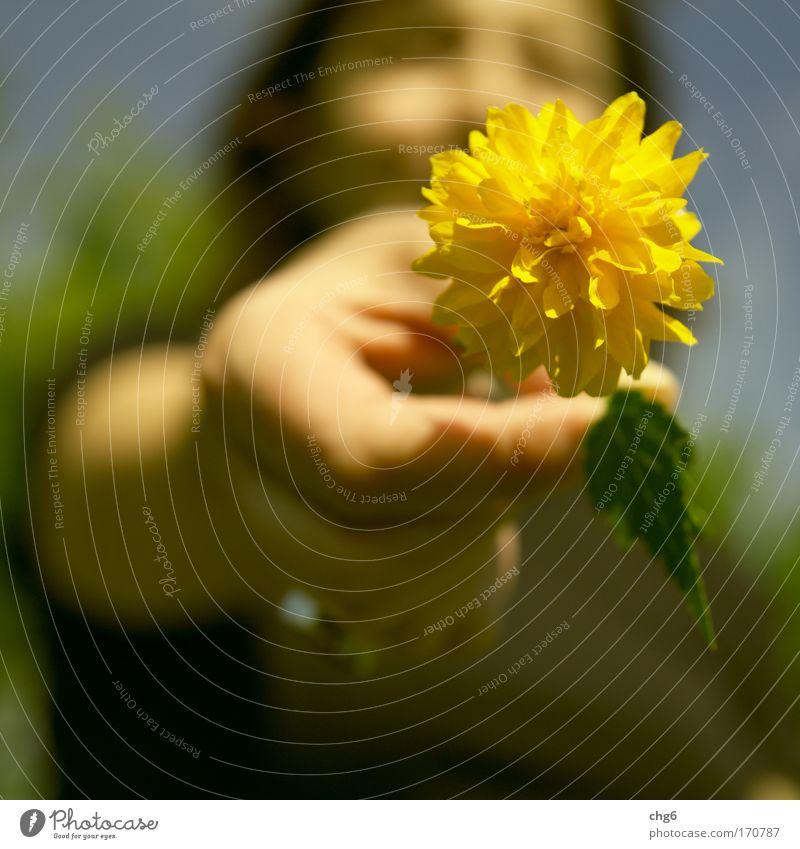 Ich gebe Dir ein Blümchen.... Frau Mensch blau grün Pflanze Blume Erwachsene gelb feminin Glück Freundschaft Fröhlichkeit 18-30 Jahre Freundlichkeit