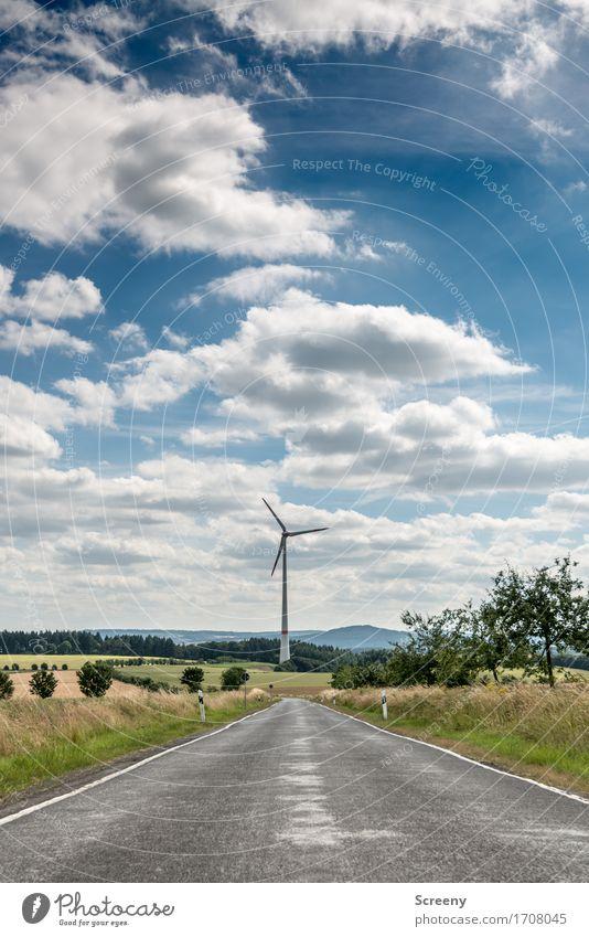 Zur Energie, da lang... Energiewirtschaft Erneuerbare Energie Windkraftanlage Natur Landschaft Himmel Wolken Sommer Schönes Wetter Gras Sträucher Wiese Feld