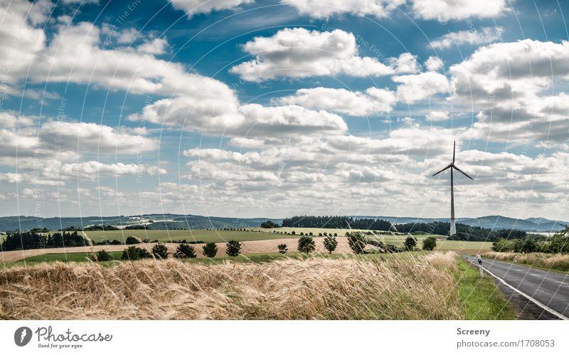 Fluffig und energiereich... Energiewirtschaft Erneuerbare Energie Windkraftanlage Natur Landschaft Pflanze Himmel Wolken Sommer Schönes Wetter Gras Sträucher