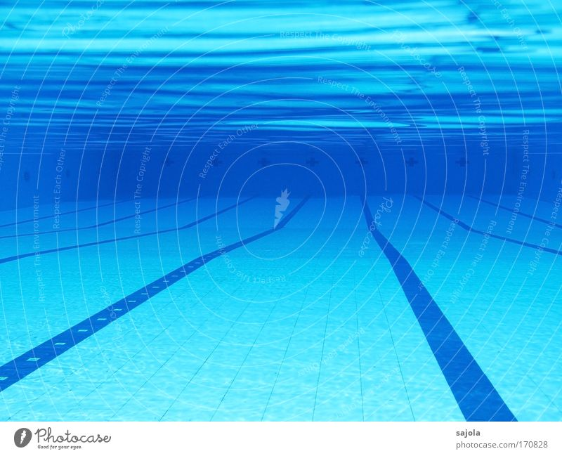 // \ pool - leer Sport Wassersport Schwimmbad Urelemente frei nass blau Chlor liniert Linie Bahn Wellenform wellig Einsamkeit Fliesen u. Kacheln Farbfoto