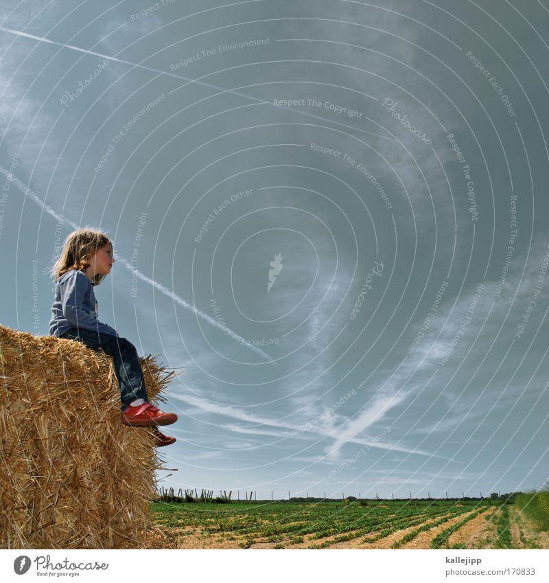 sightseeing Mensch Kind Himmel Natur Pflanze Mädchen Sommer Wolken Tier Ferne Leben Umwelt Spielen Landschaft Freiheit Landwirtschaft