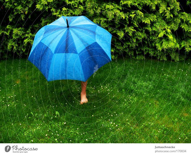Sauwetter Wiese Gras Garten nass Schutz Regenschirm Gewitter Geborgenheit schlechtes Wetter einbeinig
