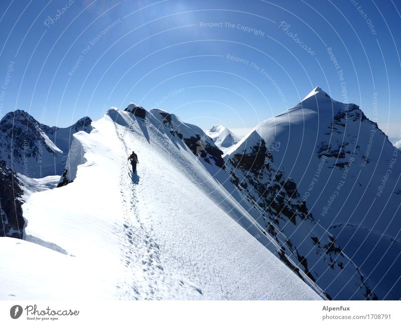 Stairway to Heaven II Natur Landschaft Berge u. Gebirge Umwelt Schnee Freiheit Felsen Angst Eis Kraft Erfolg Schönes Wetter Abenteuer Gipfel Frost Alpen