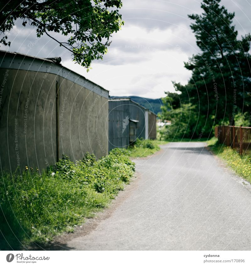 Weg zu den Garagen Himmel Natur Baum Einsamkeit ruhig Ferne Straße Leben Umwelt Landschaft Gefühle Gras Wege & Pfade Traurigkeit träumen Zeit