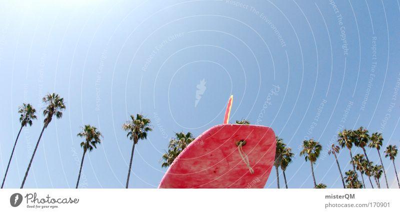 Surfer Dude. Farbfoto mehrfarbig Außenaufnahme Menschenleer Textfreiraum links Textfreiraum rechts Textfreiraum oben Hintergrund neutral Tag Sonnenlicht