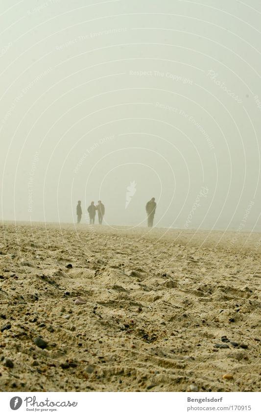 Es kam eine Stille Mensch Meer Strand Ferien & Urlaub & Reisen Einsamkeit Ferne kalt Freiheit Sand Küste Nebel Wind Ausflug Sturm Ostsee