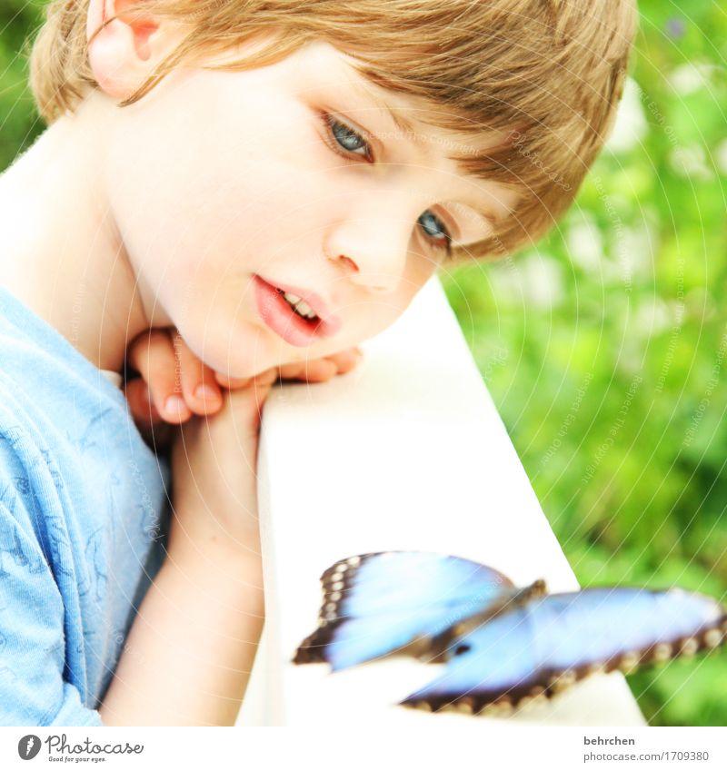nächstenliebe | für alle wesen dieser welt! Kind Natur schön Hand Tier Gesicht Auge Junge Familie & Verwandtschaft außergewöhnlich Haare & Frisuren Kopf