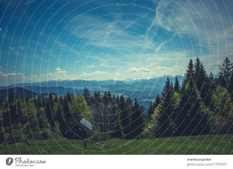 alpen fernsicht Ferien & Urlaub & Reisen Sommer Baum Landschaft Ferne Wald Berge u. Gebirge Leben Wiese Freiheit Felsen Tourismus Feld Freizeit & Hobby wandern