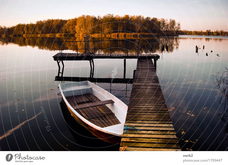 Ruder vergessen Umwelt Natur Landschaft Wasser Wolkenloser Himmel Horizont Herbst Klima Schönes Wetter Baum Wald Seeufer Insel Ruderboot Anlegestelle Steg ruhig