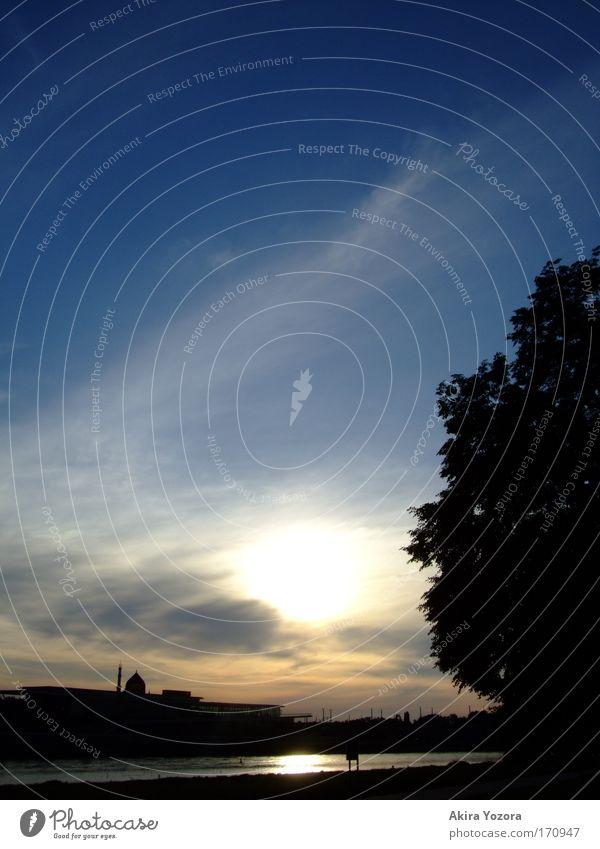 Wenn die Sonne müde wird Farbfoto Außenaufnahme Menschenleer Textfreiraum oben Abend Dämmerung Sonnenaufgang Sonnenuntergang Landschaft Himmel Wolken