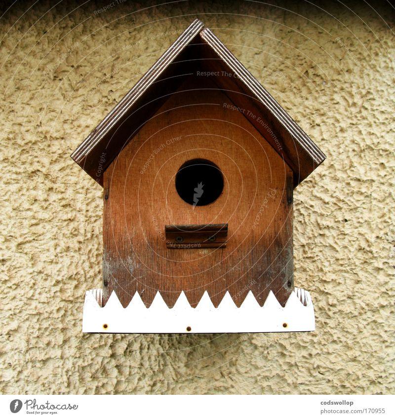 make a little birdhouse in your soul Außenaufnahme Altstadt Fassade Vogel Holz Futterhäuschen Garten Wohnung Wochenendhaus Ein-Zimmer-Appartment Nistkasten