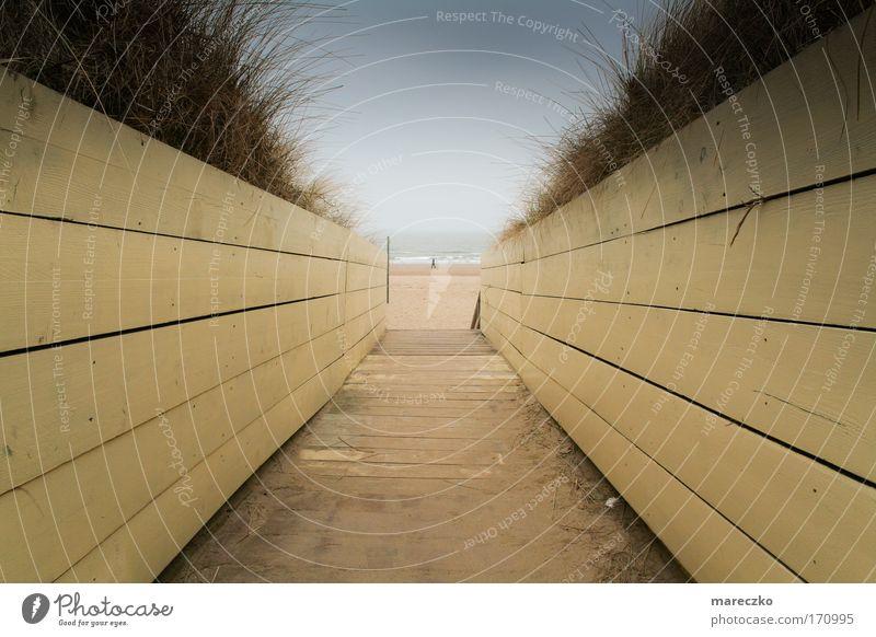 Am Meer Farbfoto Außenaufnahme Tag Erholung ruhig Ferien & Urlaub & Reisen Ausflug Ferne Freiheit Strand Sand Horizont Wind Nordsee Holz Wasser atmen gehen