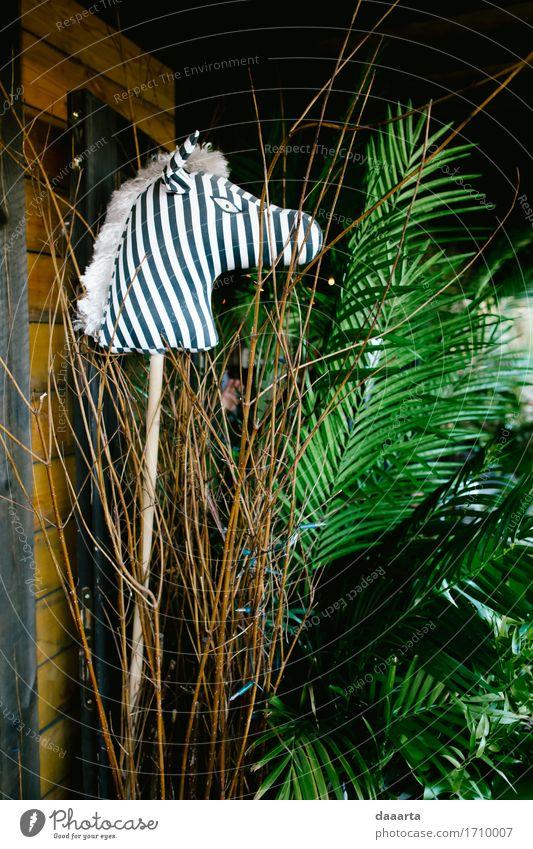 Zebra Dschungel Natur Pflanze Baum Blatt Tier Freude Leben Innenarchitektur Lifestyle Stil Spielen Freiheit wild Freizeit & Hobby Dekoration & Verzierung