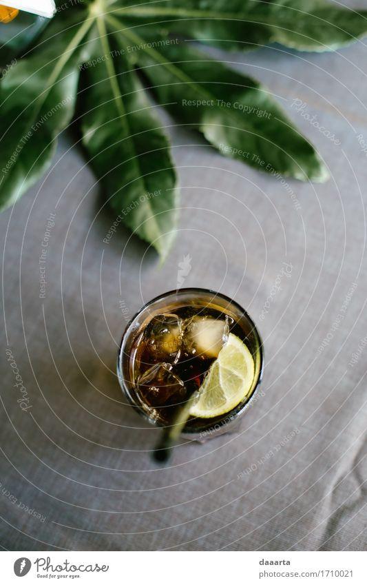 Zimmer Limone Getränk Erfrischungsgetränk Alkohol Longdrink Cocktail Glas Trinkhalm elegant Stil Freude Leben harmonisch Freizeit & Hobby Abenteuer Freiheit