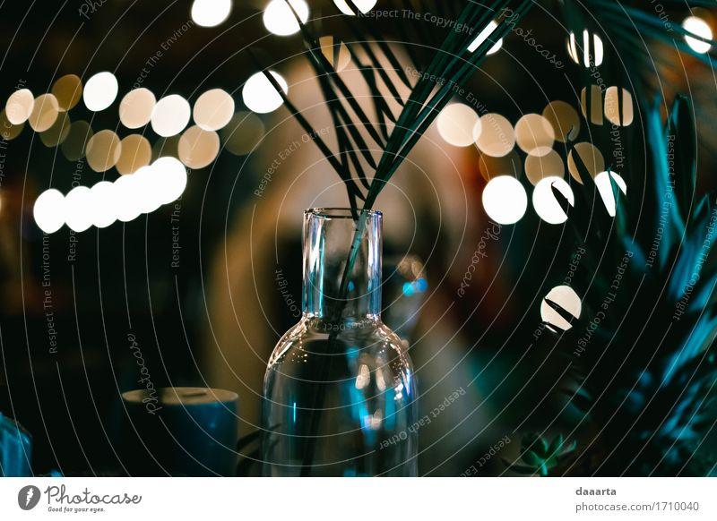 Palmen Nacht Pflanze Sommer Blatt Freude Leben Innenarchitektur Gefühle Lifestyle Stil Freiheit Feste & Feiern Party Lampe Stimmung Design Freizeit & Hobby