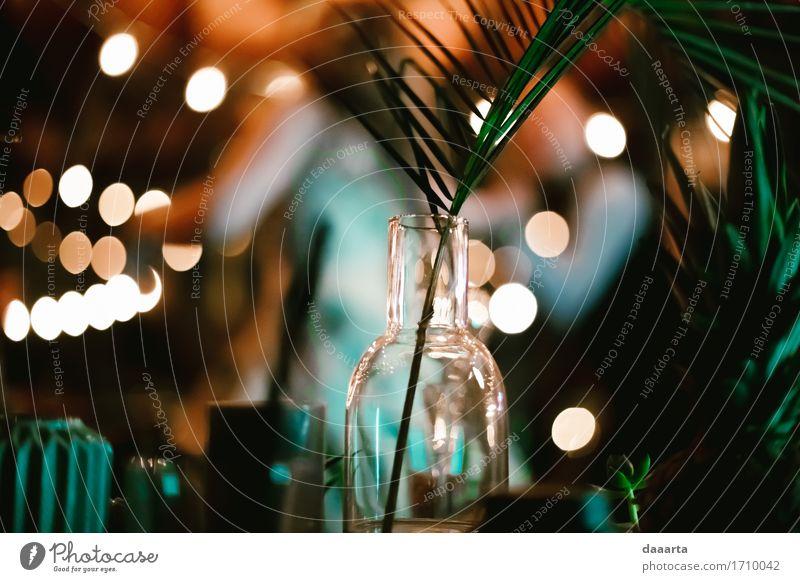 Lichter der Feier Pflanze Freude Leben Innenarchitektur Lifestyle Stil Spielen Feste & Feiern Freiheit Party Lampe Stimmung Design wild Freizeit & Hobby elegant