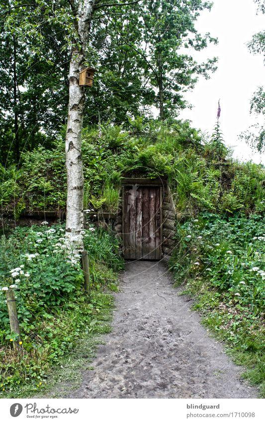 I'm Gonna Knock On Your Door Natur Landschaft Himmel Frühling Baum Blume Gras Sträucher Moos Garten Park Hügel Nordsee Moor Sumpf Bauwerk Tür alt Armut trist