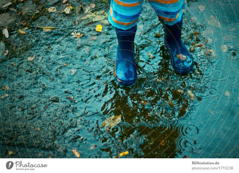 Pfützenspaß Mensch maskulin Kind Kleinkind Junge Fuß 1 1-3 Jahre Gummistiefel Wasser Spielen Fröhlichkeit Glück klein nass natürlich Freude Zufriedenheit