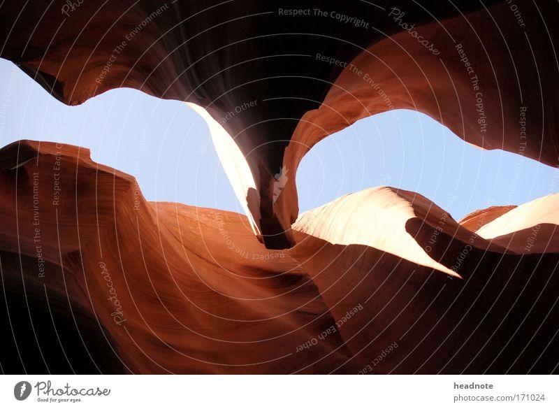Red Falcon Farbfoto Außenaufnahme Menschenleer Tag Licht Kontrast Silhouette Froschperspektive Umwelt Natur Sand Himmel Felsen Schlucht beobachten berühren