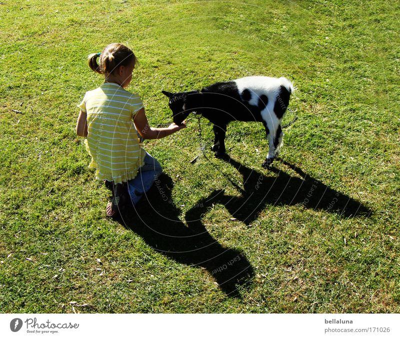 Ich fand kein einzig Blättelein... Tier Nutztier Fell 1 Tierjunges Gefühle Stimmung Freude Glück Fröhlichkeit Zufriedenheit Lebensfreude Begeisterung Tapferkeit