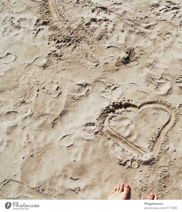 Herzlich Willkommen am Strand Sonne Sommer Strand ruhig Erholung Liebe Glück Küste Fuß Zufriedenheit Freizeit & Hobby Herz Romantik Kitsch Freundlichkeit