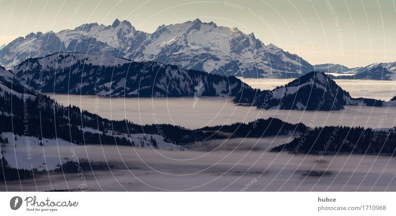 Nebelmeer im Bregenzerwald Natur Landschaft Wolkenloser Himmel Winter Wetter Schnee Wald Berge u. Gebirge Alpen Glück Euphorie schön ruhig Abenteuer ästhetisch