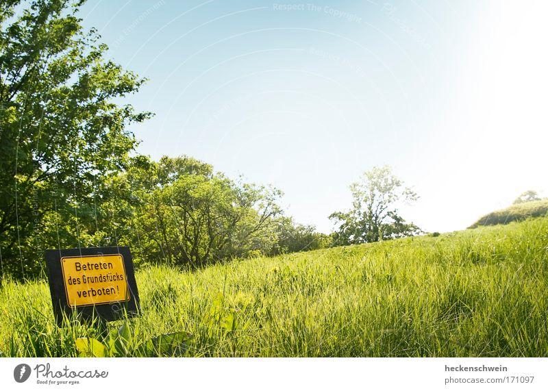 Der Himmel ist gleich um die Ecke Natur Sommer Wiese Landschaft Gras Park Horizont Schilder & Markierungen Schriftzeichen Hügel Hinweisschild Sehnsucht Zeichen