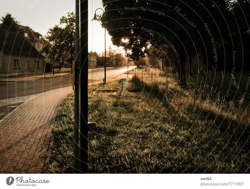 Auf den Bus warten Baum Haus Straße Gras Gebäude leuchten Idylle Straßenbeleuchtung Bürgersteig Dorf durchsichtig Wartehäuschen Bushaltestelle Glaswand