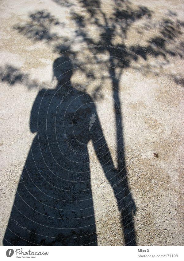 Mein Freund der Baum Mensch Natur Straße Leben Wege & Pfade Park Sand Zusammensein Beton Partner Schönes Wetter Umarmen Umweltschutz
