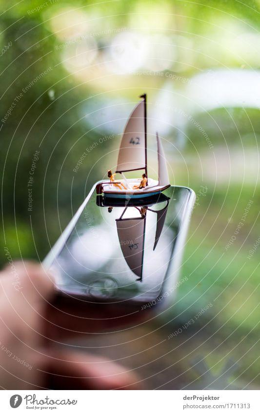 Ruhige See und guter Wind Natur Ferien & Urlaub & Reisen Landschaft Meer Freude Umwelt Küste Spielen Freiheit Freizeit & Hobby Ausflug Schönes Wetter Abenteuer