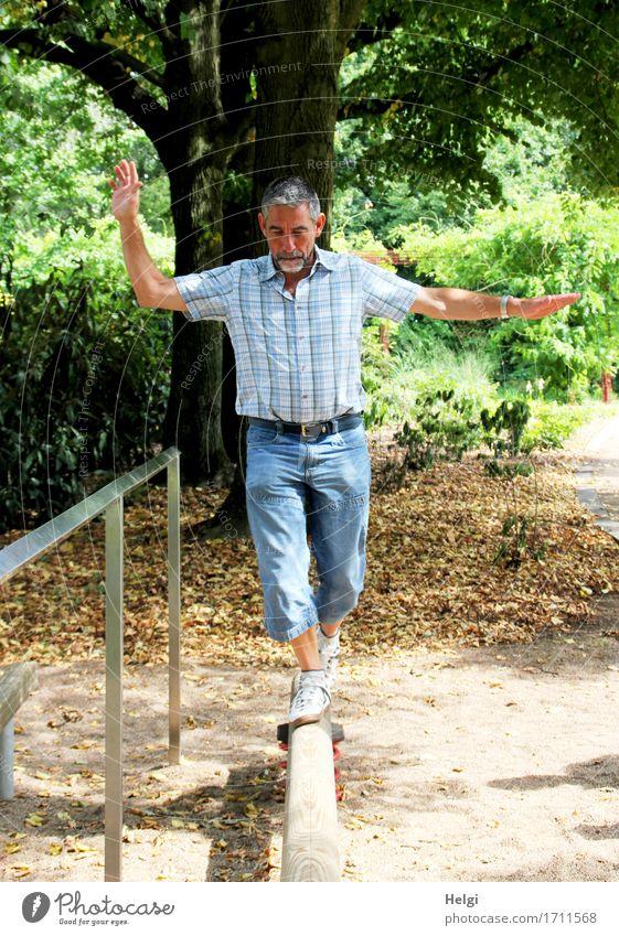 Senior mit kurzen grauen Haaren und grauem Bart, blauer Jeans und kariertem Hemd balanciert auf einem Holzbalken Gesundheit sportlich Fitness Leben
