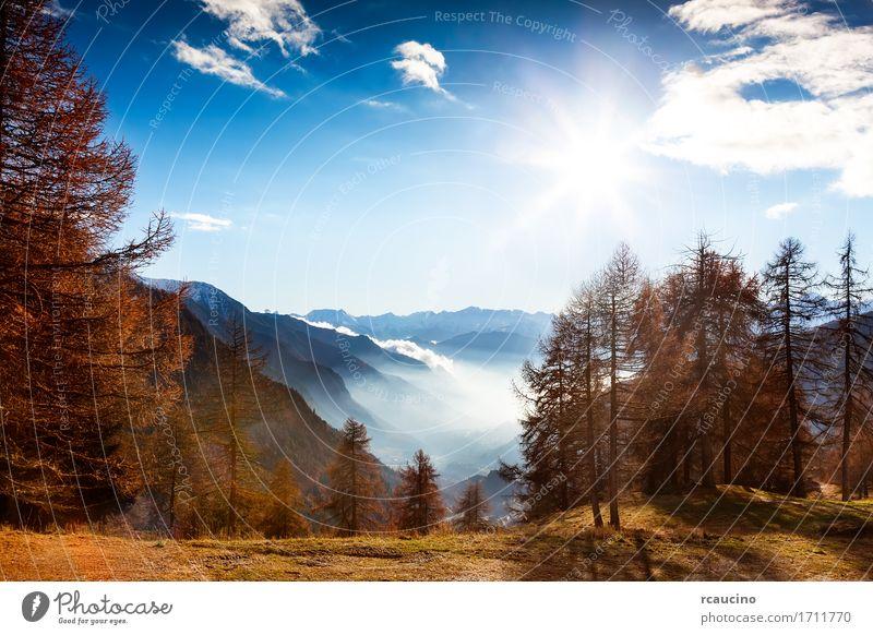 Berglandschaft im Herbst schön Ferien & Urlaub & Reisen Tourismus Sonne Winter Schnee Berge u. Gebirge Natur Landschaft Himmel Baum Wald Alpen Stimmung antik