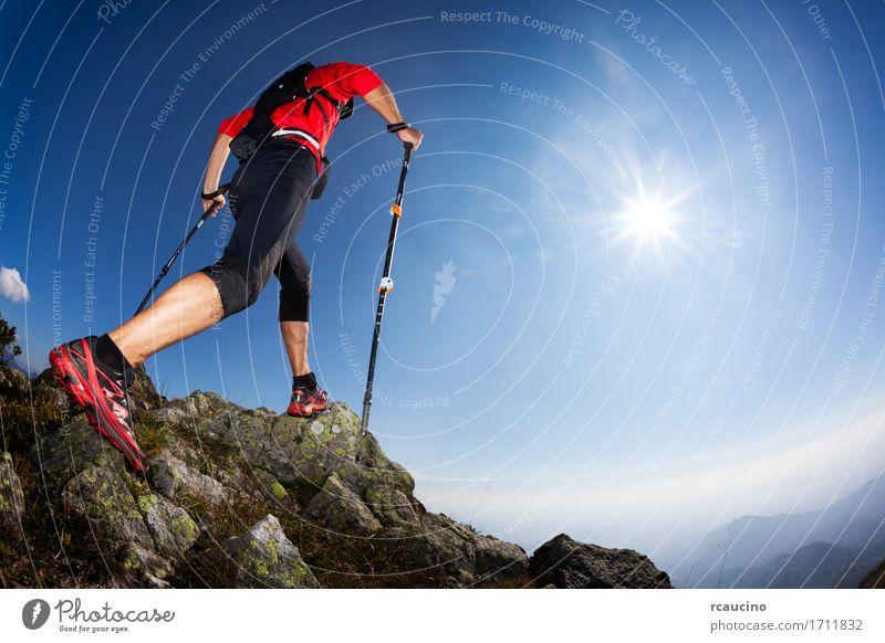 Skyrunning: Rückansicht eines jungen männlichen Läufer Freiheit Sommer Sonne Berge u. Gebirge wandern Sport Mensch Mann Erwachsene Natur Landschaft Himmel