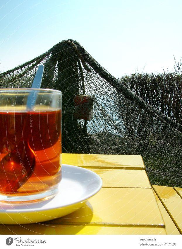 Das Meer kann warten Sonne Erholung gelb Küste Zeit Tisch trinken Ostsee Netz Tee Holztisch Hecke Untertasse Teetrinken
