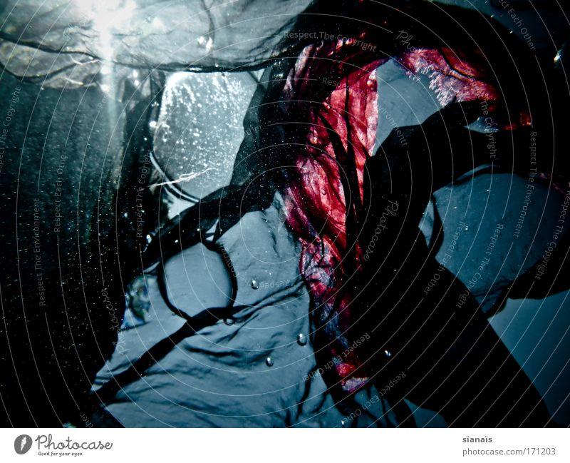 badesachen blau Wasser schwarz dunkel träumen Wellen ästhetisch Stoff geheimnisvoll tauchen fantastisch Flüssigkeit durchsichtig Luftblase Textilien Schal