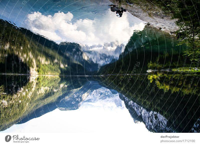 Bergseee in Spiegelung mit Taucher Ferien & Urlaub & Reisen Natur Pflanze Landschaft Tier Ferne Berge u. Gebirge Herbst Umwelt Tourismus Freiheit See Felsen