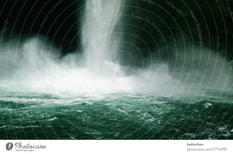 platsch! (teil 1) Ferien & Urlaub & Reisen Tourismus Ausflug Abenteuer Ferne Freiheit Natur Landschaft Wasser Klima Klimawandel Fluss Wasserfall la fortuna