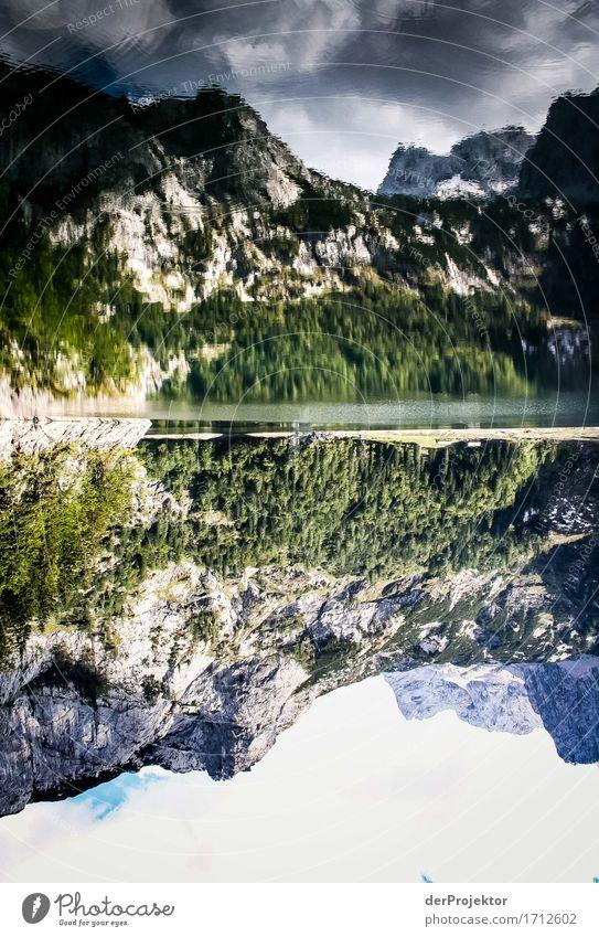 Doppelte Idylle Ferien & Urlaub & Reisen Tourismus Ausflug Abenteuer Ferne Freiheit Berge u. Gebirge wandern Umwelt Natur Landschaft Pflanze Tier Herbst