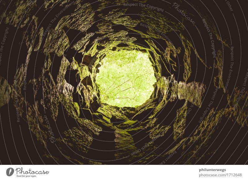Rapunzel? Freizeit & Hobby Ausflug Abenteuer Expedition Erde Park Wald Sintra Lissabon Portugal Architektur Brunnen Turm Mauer Wand Treppe Sehenswürdigkeit