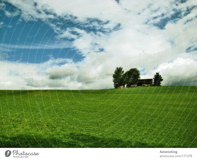 drüben am Hügel Umwelt Natur Landschaft Himmel Wolken Sommer Wetter Pflanze Baum Gras Hütte schön blau grün weiß Farbfoto mehrfarbig Außenaufnahme Menschenleer