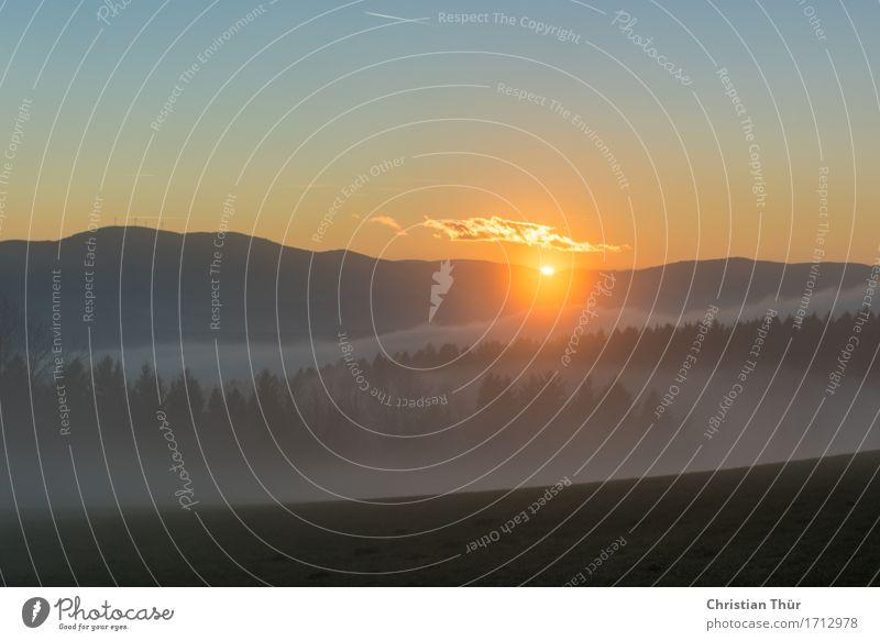 Morgenimpressionen Himmel Natur Ferien & Urlaub & Reisen Baum Landschaft Erholung ruhig Berge u. Gebirge Umwelt Leben Herbst Wiese Freiheit Tourismus