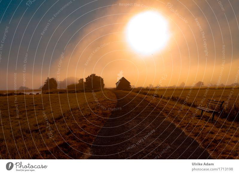 Die große Sonne im Teufelsmoor Ferien & Urlaub & Reisen Tourismus Ausflug Abenteuer Freiheit Fahrradtour Natur Landschaft Himmel Sonnenaufgang Sonnenuntergang