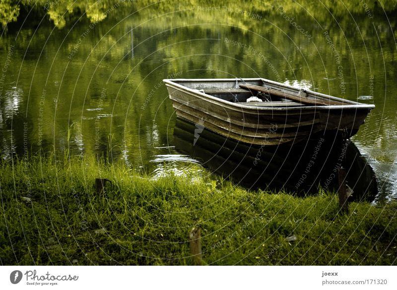 Fisherman's Friend Farbfoto Außenaufnahme Textfreiraum links Morgen Morgendämmerung Abend Dämmerung Natur Wasser Seeufer Flussufer Teich ruhig Anglerboot Wiese